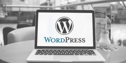 The benefits of using WordPress development in e-commerce website design