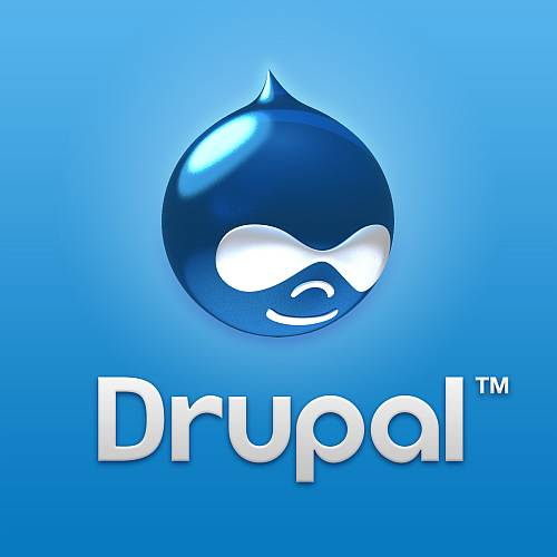 Stimulate Your Business Pulse With Drupal