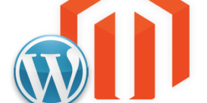 Magento vs WordPress: What to Choose for an eCommerce Website?