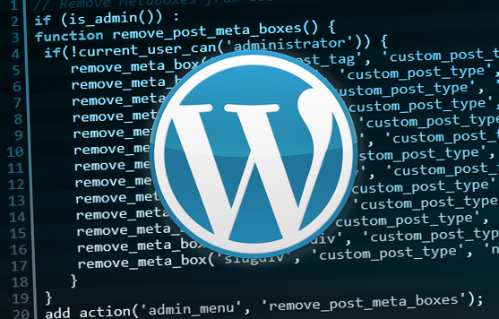 10+ Useful WordPress Code Snippets