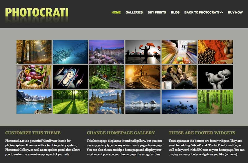 7 Amazing WordPress Photography Themes 2013