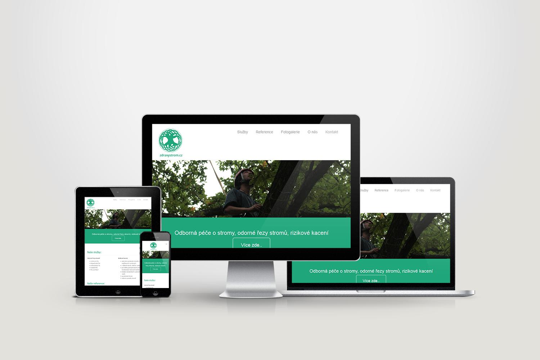 Zdravý strom – Odborná péče o stromy