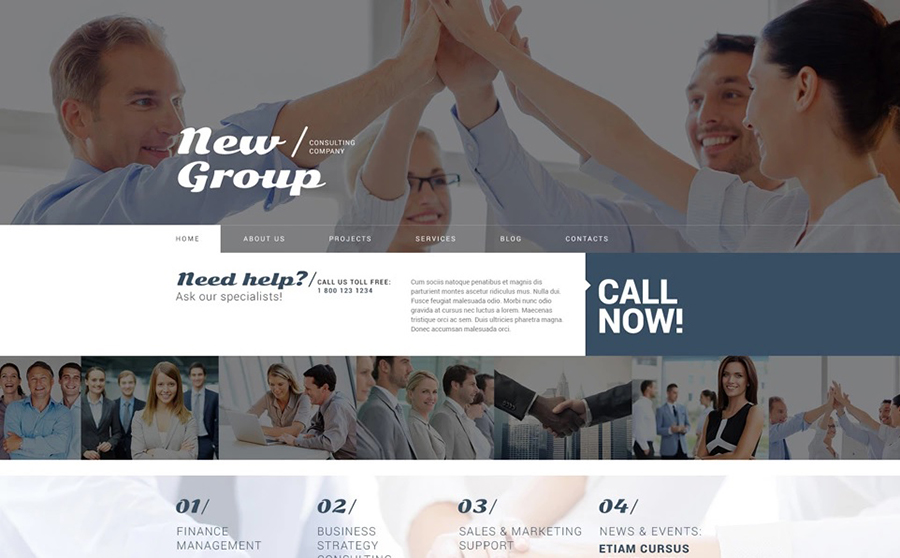 Consulting Company Free WordPress Template