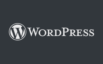 Publishing systems – WordPress 2.8