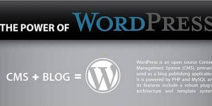 The Power of WordPress – Infographic