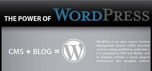 The Power of WordPress – Infographic