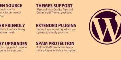 Which Blogging Platform Should You Use – Infographic