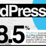The Prolific WordPress – Infographic