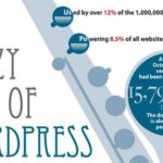 The Jazzy Rise of WordPress – Infographic