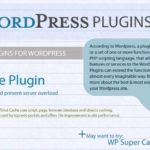 WordPress Plugins 101 – Infographic