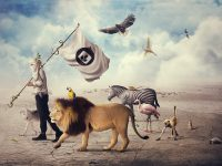 Adobe Photoshop & Illustrator Tutorials