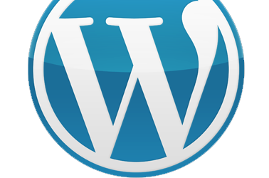 Publishing systems – WordPress 2.6