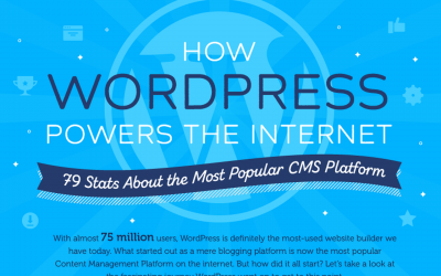 Stats that Showcase WordPress's Popularity – Infographic