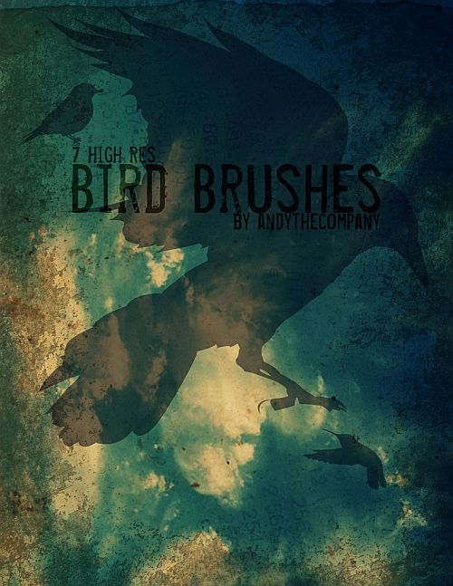 Hi Res Bird Brushes by ~andythecompany on deviantART