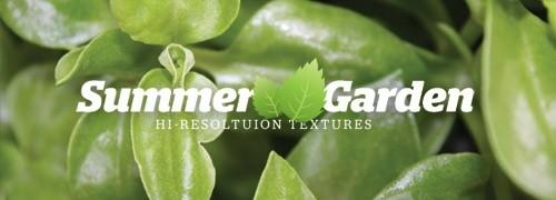 Freebies - 44 High-Res Summer Garden Textures