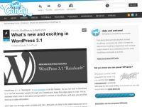 Publishing systems – WordPress 3.1