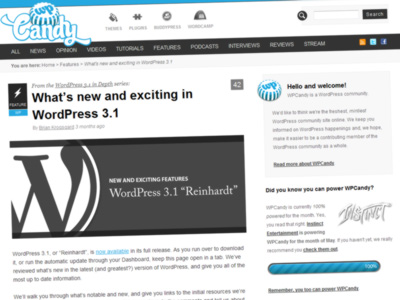 Publishing systems – WordPress 3.1